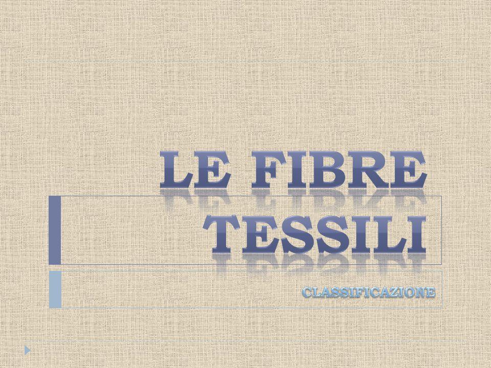 4.Con il Rinascimento, il gusto per uno stile di vita raffinato rafforza la presenza del Lino nella vita quotidiana e viene usato per produrre lenzuola e camicie.