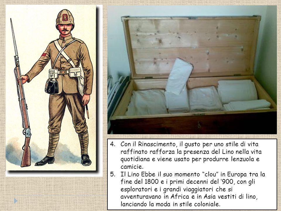 Storia 1. II lino era largamente coltivata da Egizi utilizzato oltre che per l'abbigliamento, anche per fasciare le mummie, Babilonesi, dai Fenici, ce