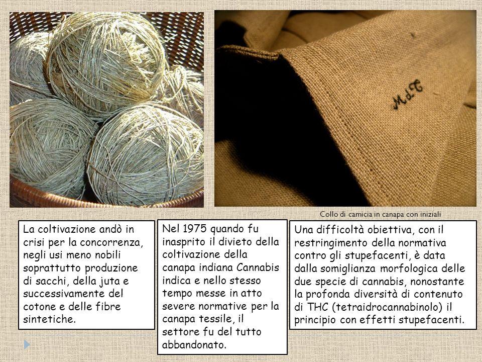 La maciulla impiegata in Boemia per accelerare il lavoro tradizionalmente realizzato con mazze, la più primitiva delle macchine per separare la fibra