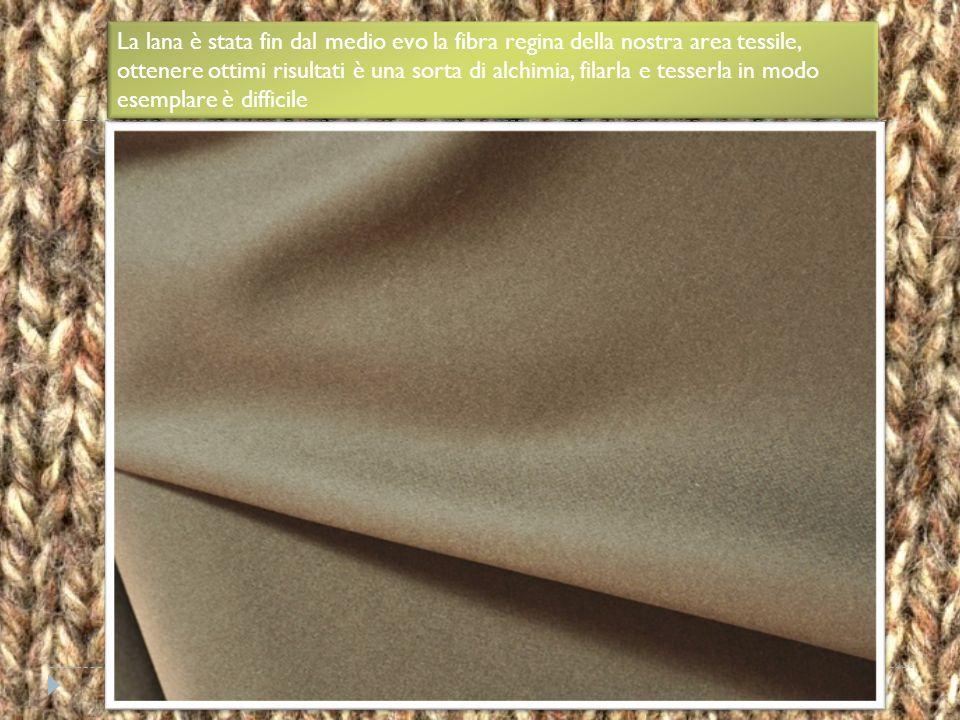 E' una lana a fibra lunga leggermente ruvida e pelosa. E' molto resistente e non infeltrisce. E' una lana a fibra lunga leggermente ruvida e pelosa. E
