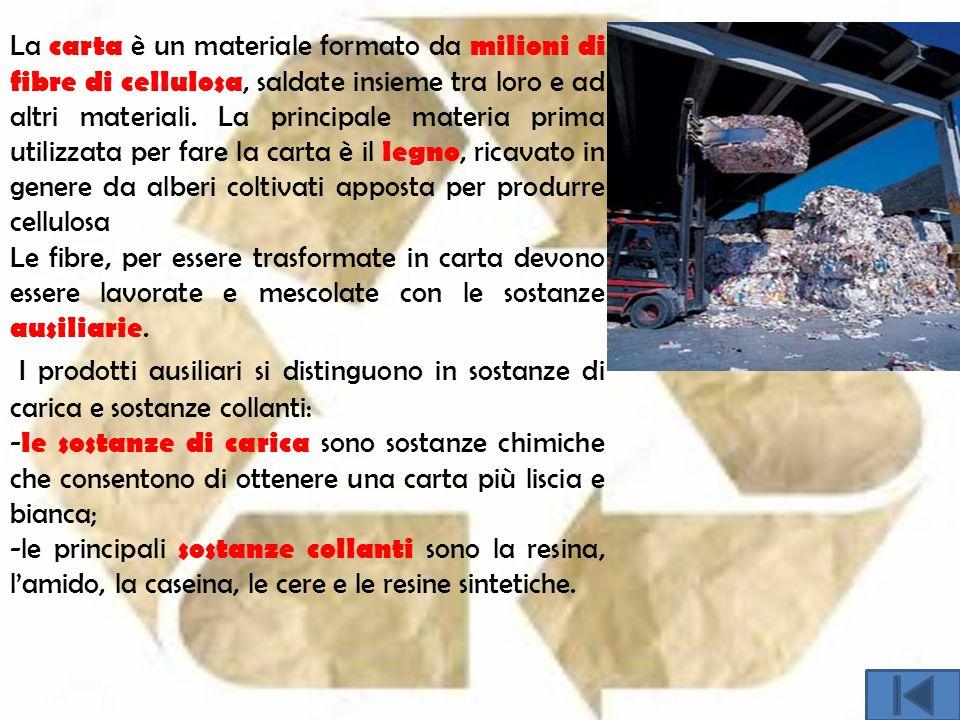 La carta è un materiale formato da milioni di fibre di cellulosa, saldate insieme tra loro e ad altri materiali.
