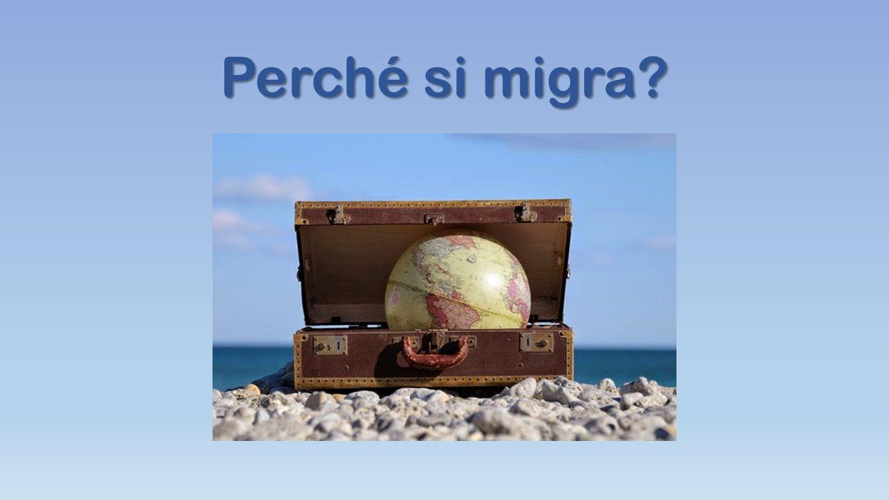 Perché si migra?