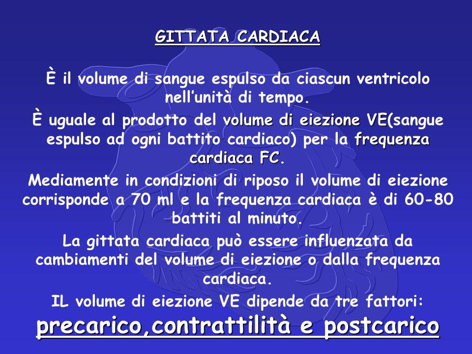 GITTATA CARDIACA È il volume di sangue espulso da ciascun ventricolo nell'unità di tempo.
