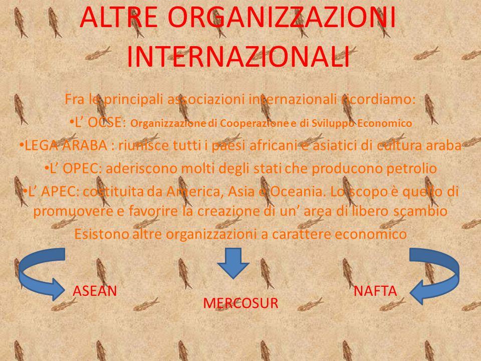 ALTRE ORGANIZZAZIONI INTERNAZIONALI Fra le principali associazioni internazionali ricordiamo: L' OCSE: Organizzazione di Cooperazione e di Sviluppo Economico LEGA ARABA : riunisce tutti i paesi africani e asiatici di cultura araba L' OPEC: aderiscono molti degli stati che producono petrolio L' APEC: costituita da America, Asia e Oceania.