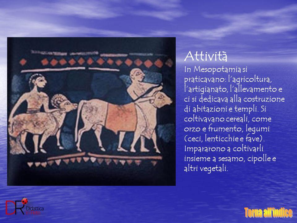 Attività In Mesopotamia si praticavano: l'agricoltura, l'artigianato, l'allevamento e ci si dedicava alla costruzione di abitazioni e templi. Si colti