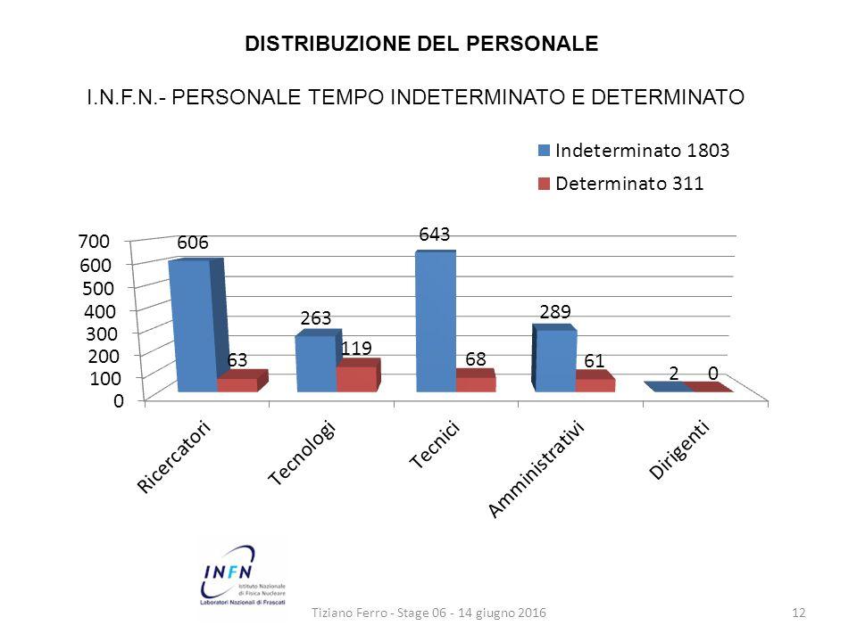 Tiziano Ferro - Stage 06 - 14 giugno 201612 DISTRIBUZIONE DEL PERSONALE I.N.F.N.- PERSONALE TEMPO INDETERMINATO E DETERMINATO