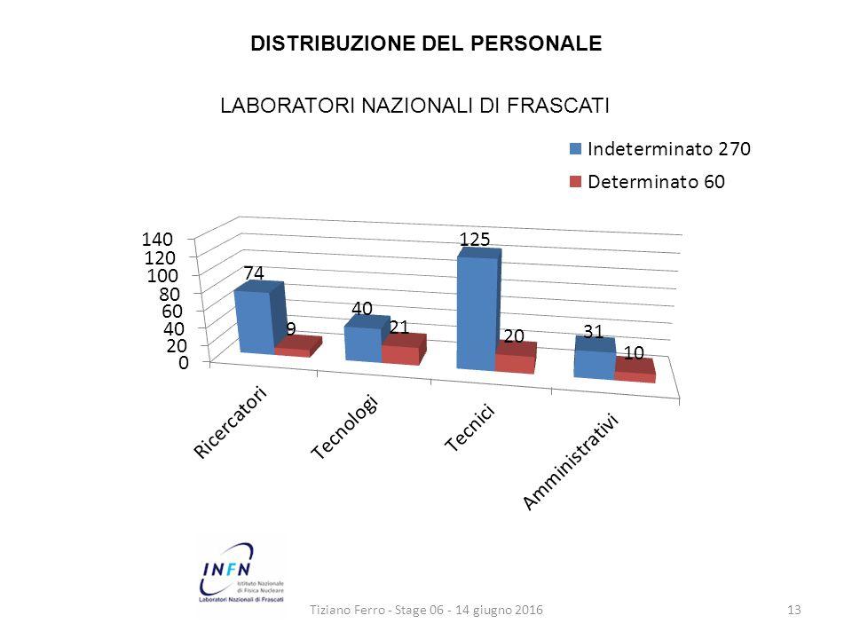 Tiziano Ferro - Stage 06 - 14 giugno 201613 DISTRIBUZIONE DEL PERSONALE LABORATORI NAZIONALI DI FRASCATI