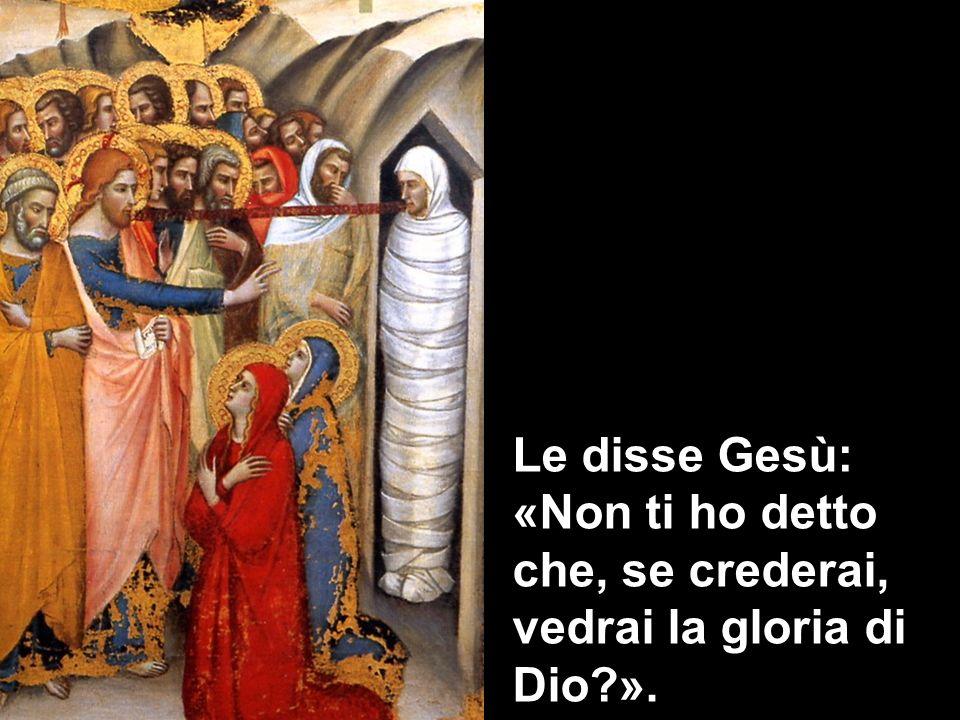 Le disse Gesù: «Non ti ho detto che, se crederai, vedrai la gloria di Dio?».