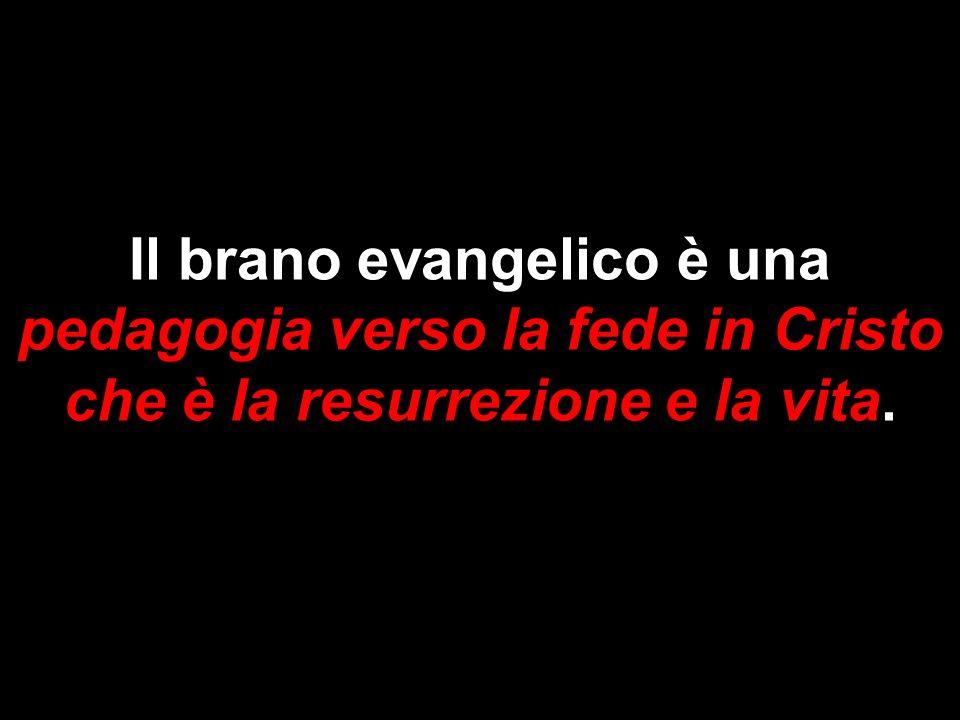 Il brano evangelico è una pedagogia verso la fede in Cristo che è la resurrezione e la vita.