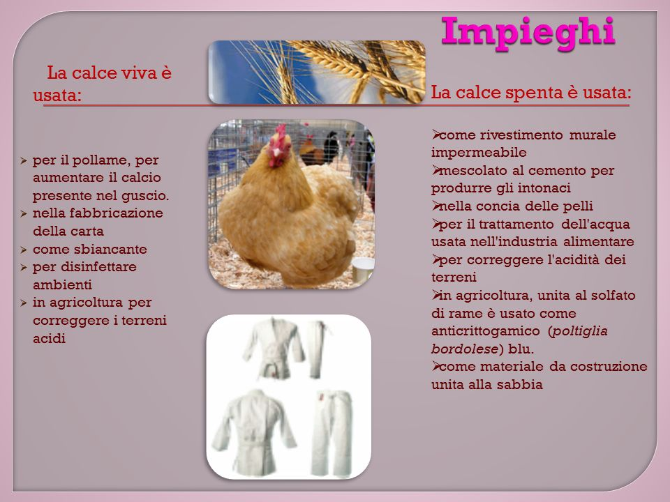 La calce viva è usata:  per il pollame, per aumentare il calcio presente nel guscio.