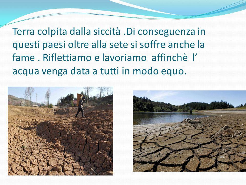 Terra colpita dalla siccità.Di conseguenza in questi paesi oltre alla sete si soffre anche la fame.