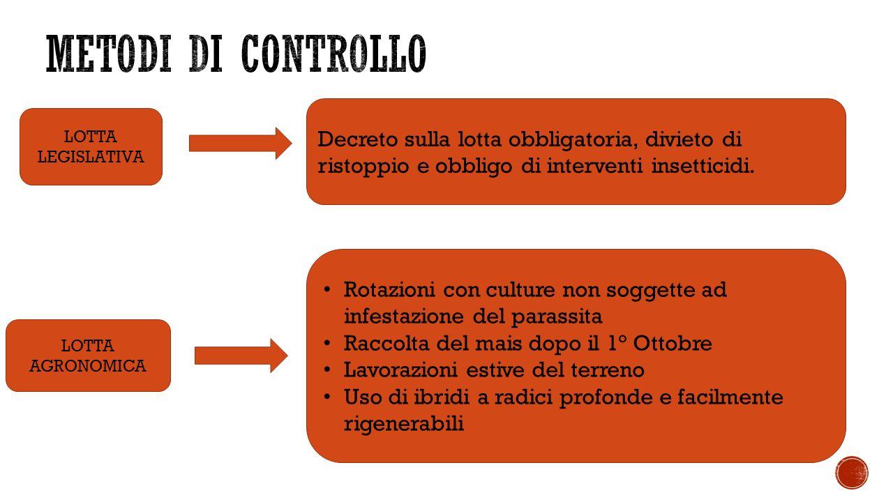LOTTA LEGISLATIVA Decreto sulla lotta obbligatoria, divieto di ristoppio e obbligo di interventi insetticidi.