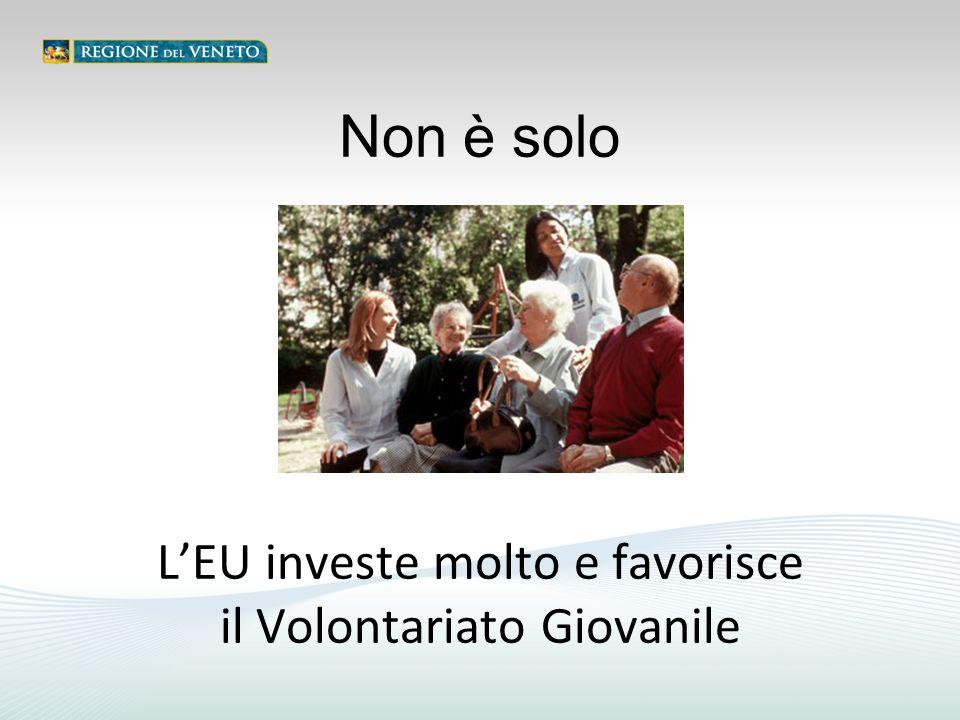 L'EU investe molto e favorisce il Volontariato Giovanile Non è solo