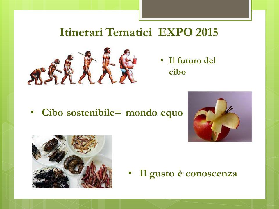 Itinerari Tematici EXPO 2015 Cibo sostenibile= mondo equo Il futuro del cibo Il gusto è conoscenza