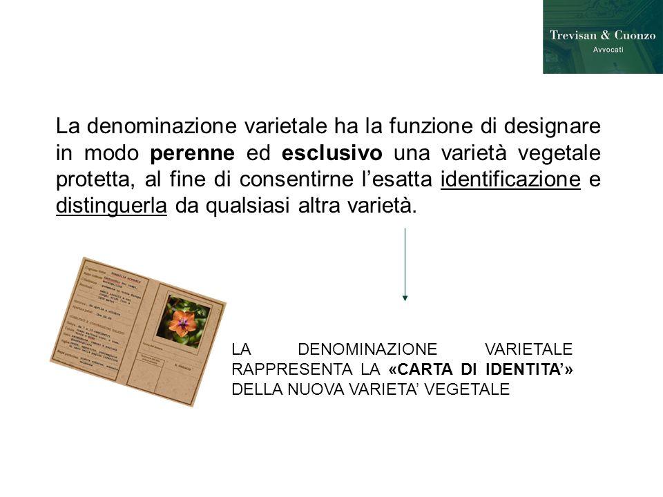 La denominazione varietale ha la funzione di designare in modo perenne ed esclusivo una varietà vegetale protetta, al fine di consentirne l'esatta identificazione e distinguerla da qualsiasi altra varietà.