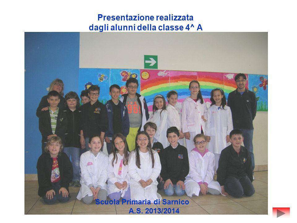 Presentazione realizzata dagli alunni della classe 4^ A Scuola Primaria di Sarnico A.S. 2013/2014