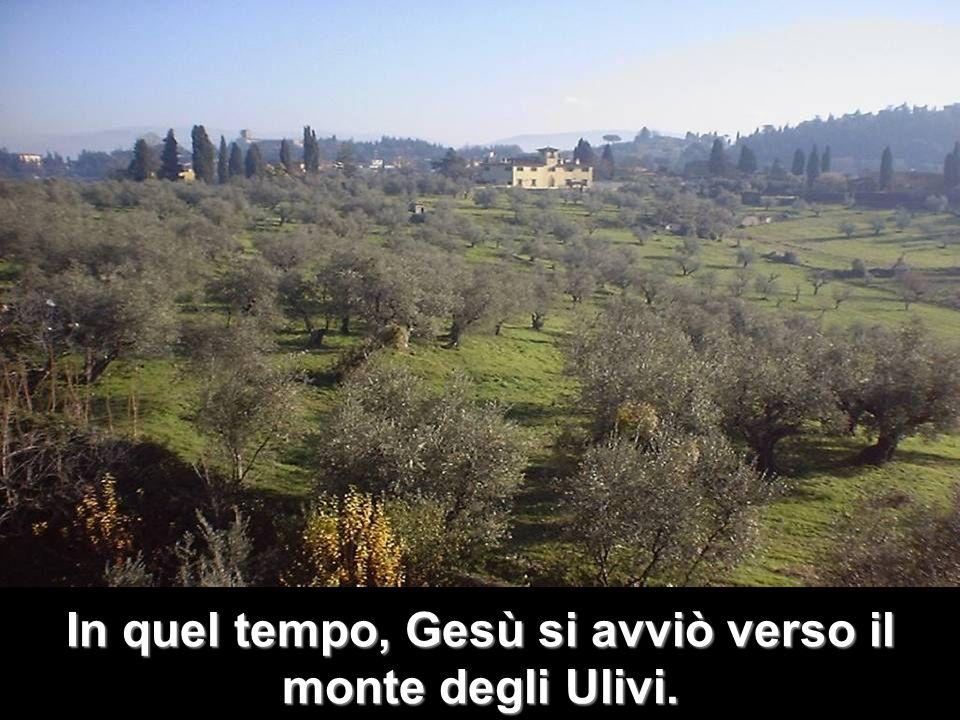 In quel tempo, Gesù si avviò verso il monte degli Ulivi.