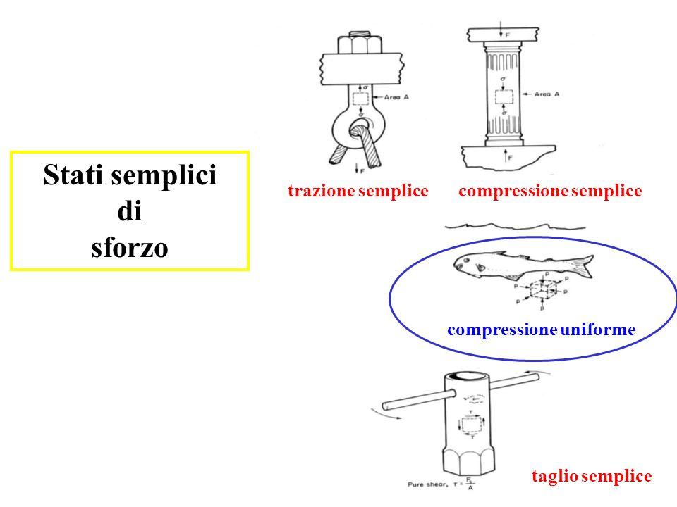 Stati semplici di sforzo trazione semplicecompressione semplice taglio semplice compressione uniforme