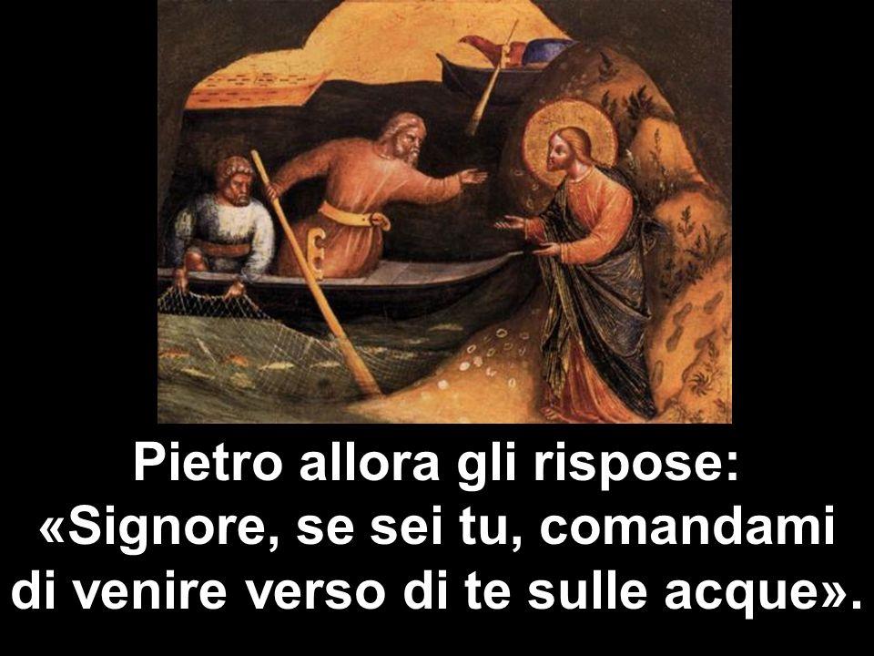 Pietro allora gli rispose: «Signore, se sei tu, comandami di venire verso di te sulle acque».