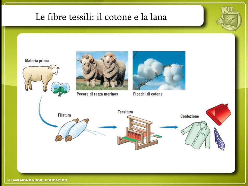 Le fibre tessili: il cotone e la lana