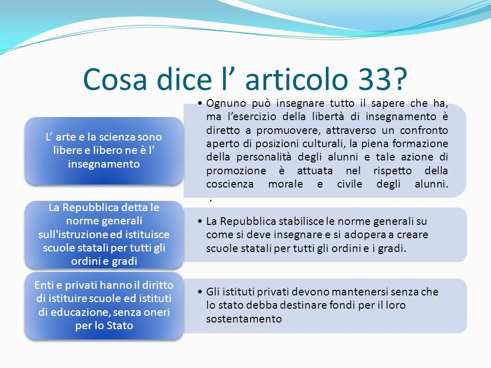 Cosa dice l' articolo 33.