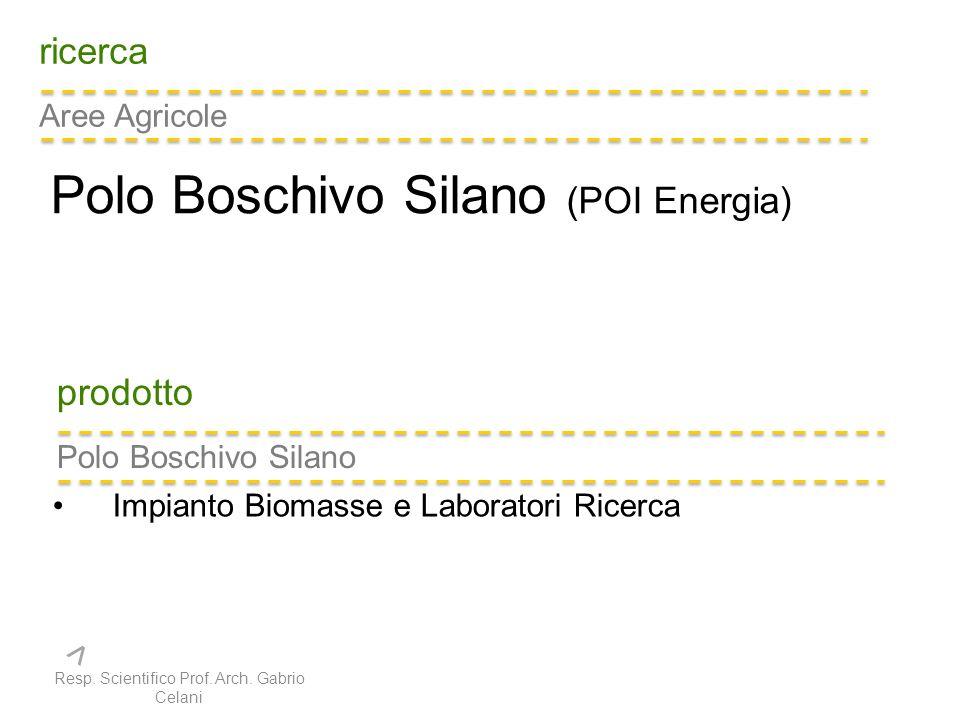 ricerca Aree Agricole Polo Boschivo Silano (POI Energia) prodotto Polo Boschivo Silano Impianto Biomasse e Laboratori Ricerca Resp.