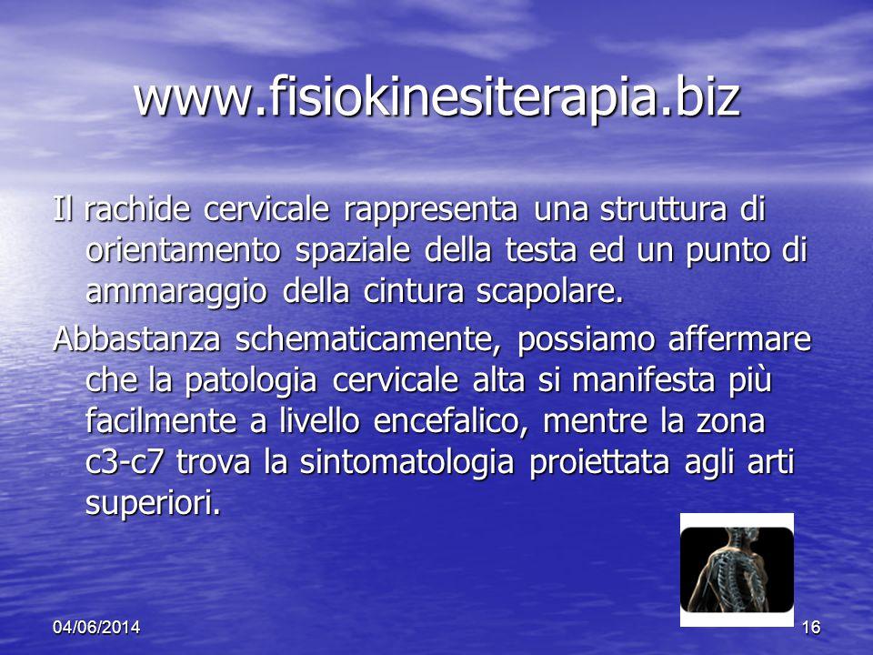 04/06/201416 www.fisiokinesiterapia.biz Il rachide cervicale rappresenta una struttura di orientamento spaziale della testa ed un punto di ammaraggio