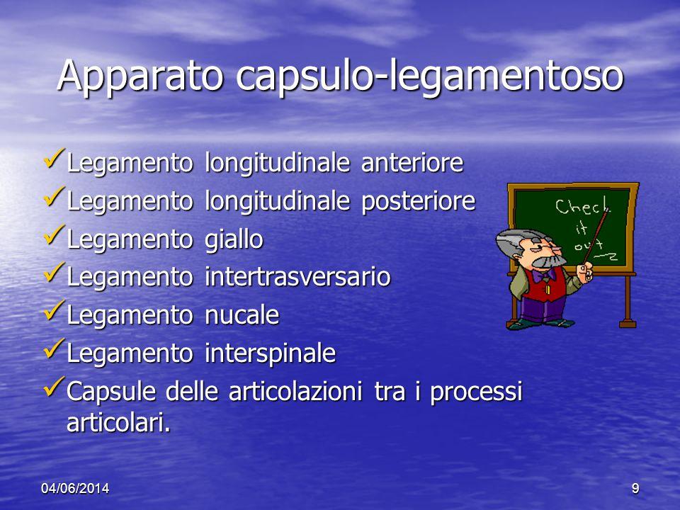 04/06/20149 Apparato capsulo-legamentoso Legamento longitudinale anteriore Legamento longitudinale anteriore Legamento longitudinale posteriore Legame