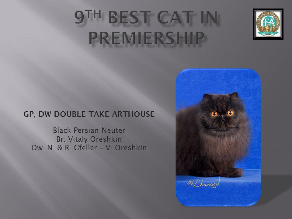 GP, DW DOUBLE TAKE ARTHOUSE Black Persian Neuter Br.