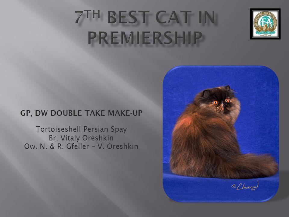 GP, DW DOUBLE TAKE MAKE-UP Tortoiseshell Persian Spay Br.