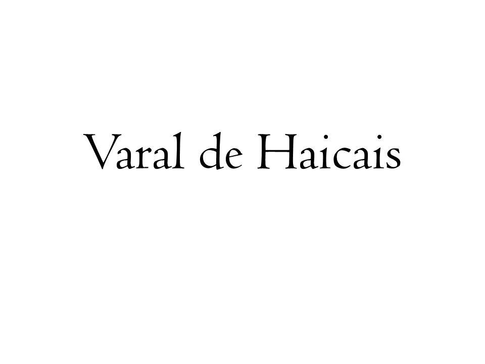 Varal de Haicais