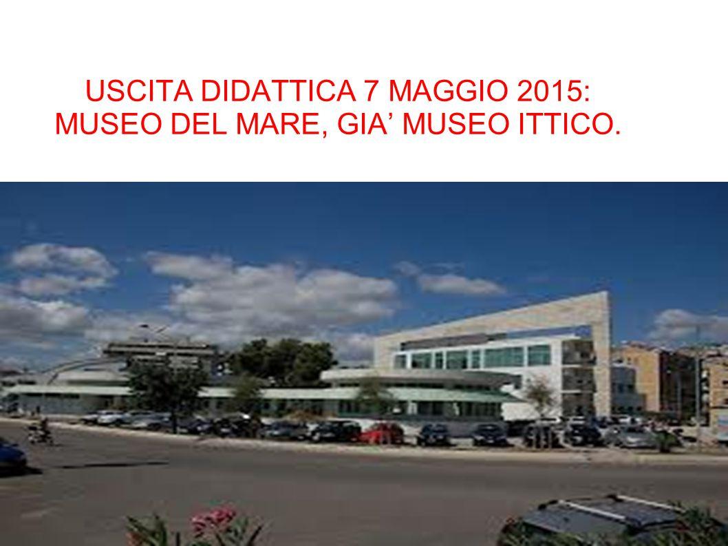 USCITA DIDATTICA 7 MAGGIO 2015: MUSEO DEL MARE, GIA' MUSEO ITTICO.