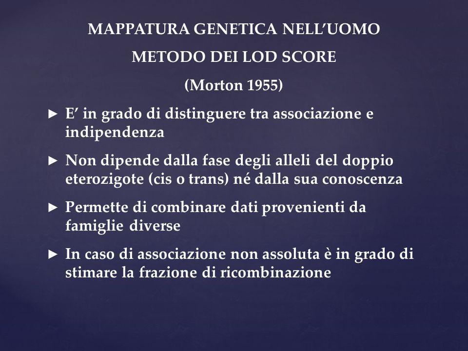 MAPPATURA GENETICA NELL'UOMO METODO DEI LOD SCORE (Morton 1955) ► E' in grado di distinguere tra associazione e indipendenza ► Non dipende dalla fase