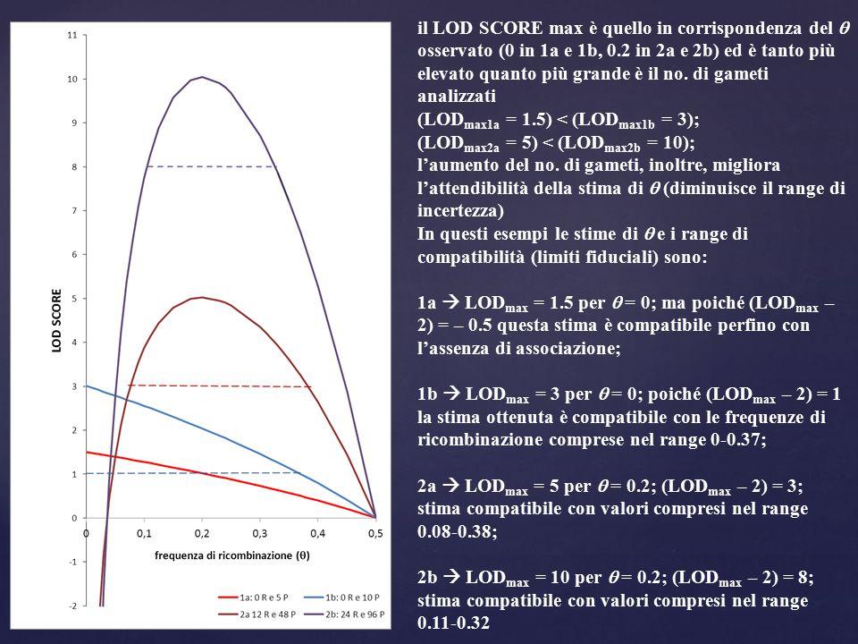 il LOD SCORE max è quello in corrispondenza del  osservato (0 in 1a e 1b, 0.2 in 2a e 2b) ed è tanto più elevato quanto più grande è il no. di gameti