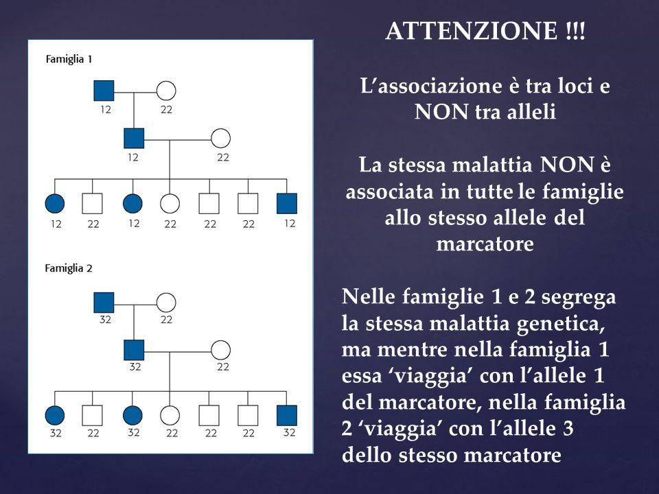 ATTENZIONE !!! L'associazione è tra loci e NON tra alleli La stessa malattia NON è associata in tutte le famiglie allo stesso allele del marcatore Nel