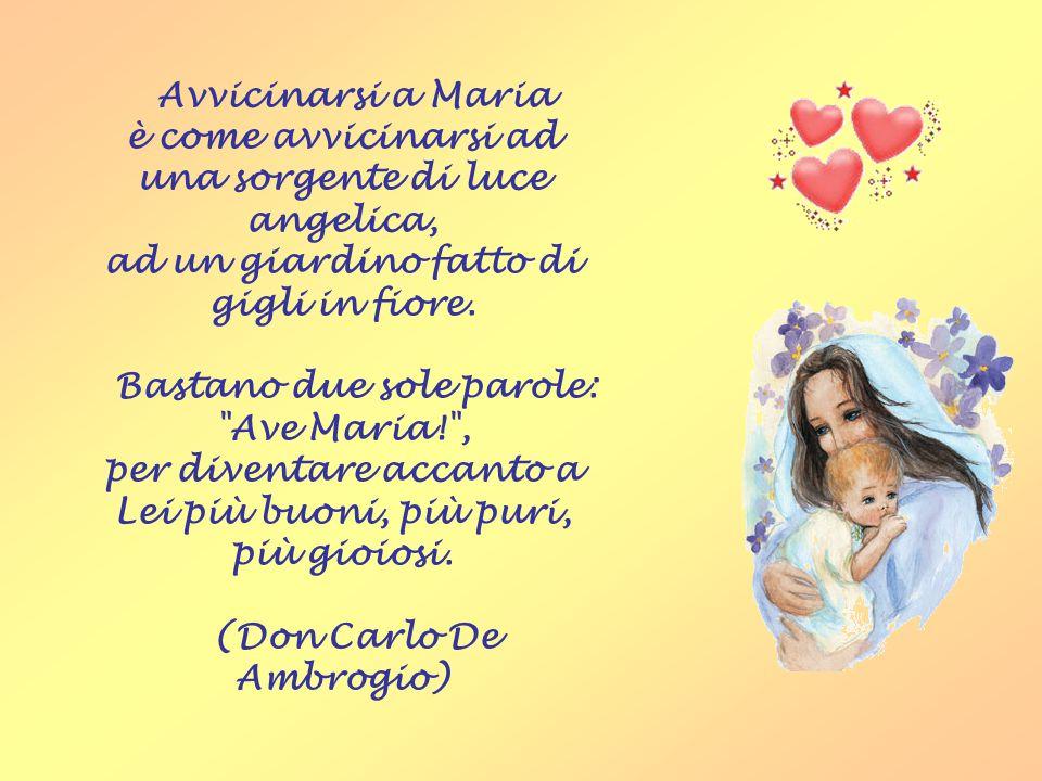 Il saluto più bello Il saluto più bello che noi possiamo donare alla Madonna è l'Ave o Maria.