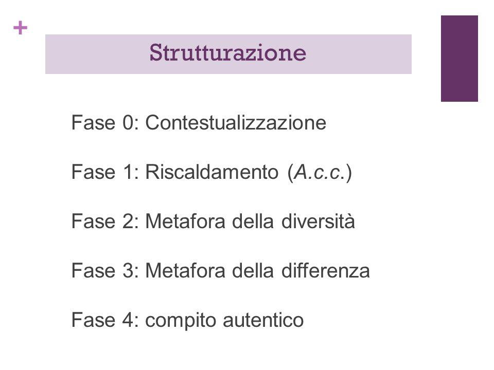 + Fase 0: Contestualizzazione Fase 1: Riscaldamento (A.c.c.) Fase 2: Metafora della diversità Fase 3: Metafora della differenza Fase 4: compito autentico Strutturazione