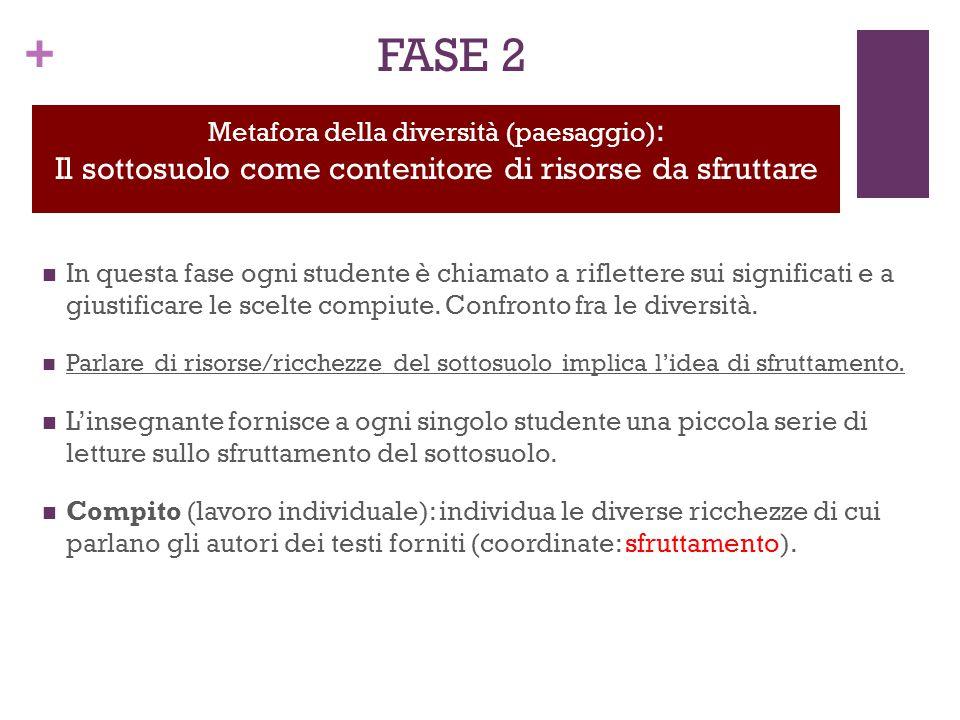 + FASE 2 In questa fase ogni studente è chiamato a riflettere sui significati e a giustificare le scelte compiute.