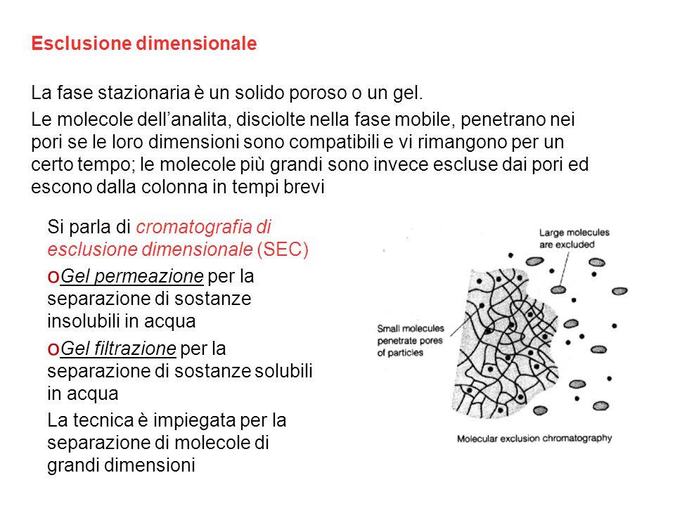 Esclusione dimensionale La fase stazionaria è un solido poroso o un gel.