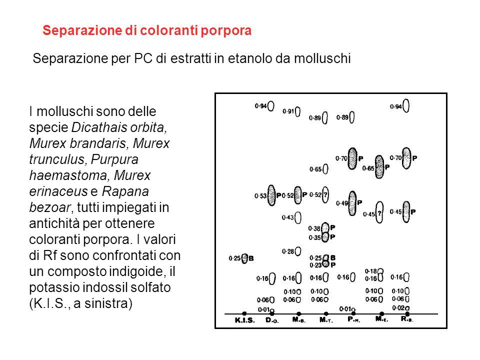 Separazione di coloranti porpora Separazione per PC di estratti in etanolo da molluschi I molluschi sono delle specie Dicathais orbita, Murex brandari