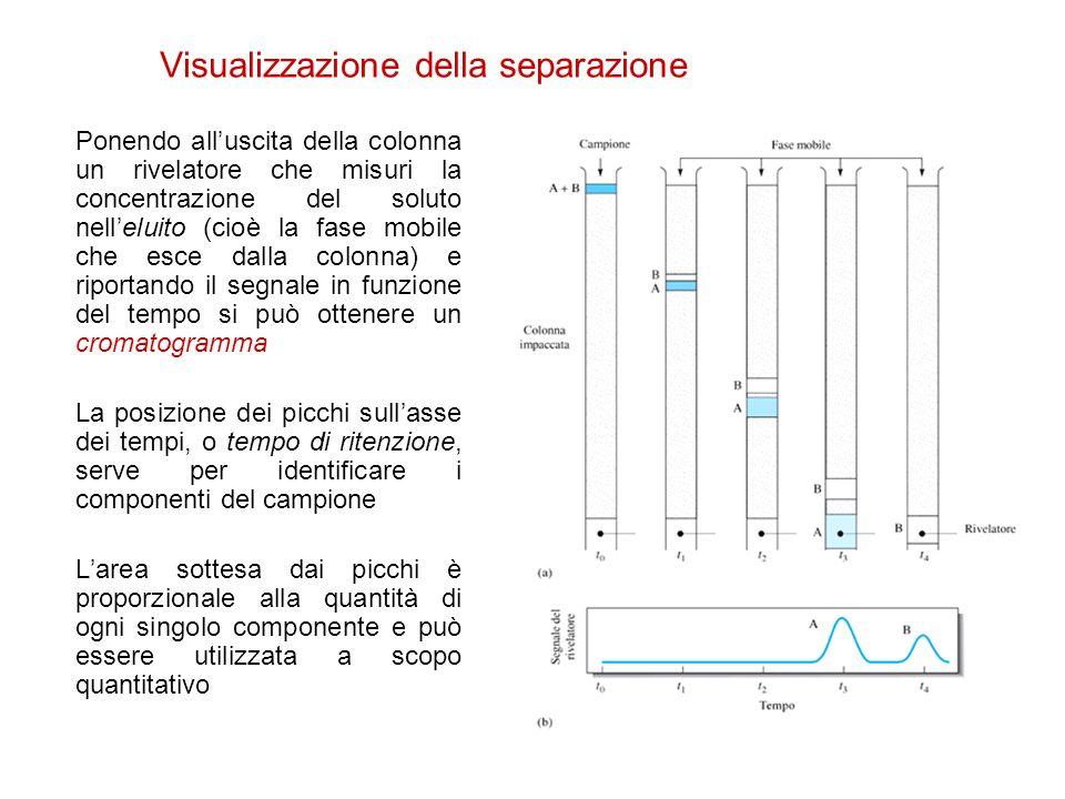 Visualizzazione della separazione Ponendo all'uscita della colonna un rivelatore che misuri la concentrazione del soluto nell'eluito (cioè la fase mob