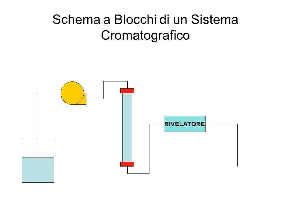 Schema a Blocchi di un Sistema Cromatografico RIVELATORE
