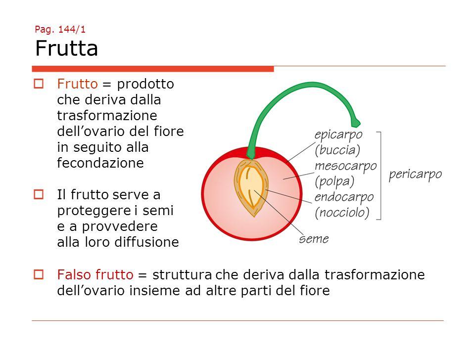 Pag. 144/1 Frutta  Frutto = prodotto che deriva dalla trasformazione dell'ovario del fiore in seguito alla fecondazione  Il frutto serve a protegger