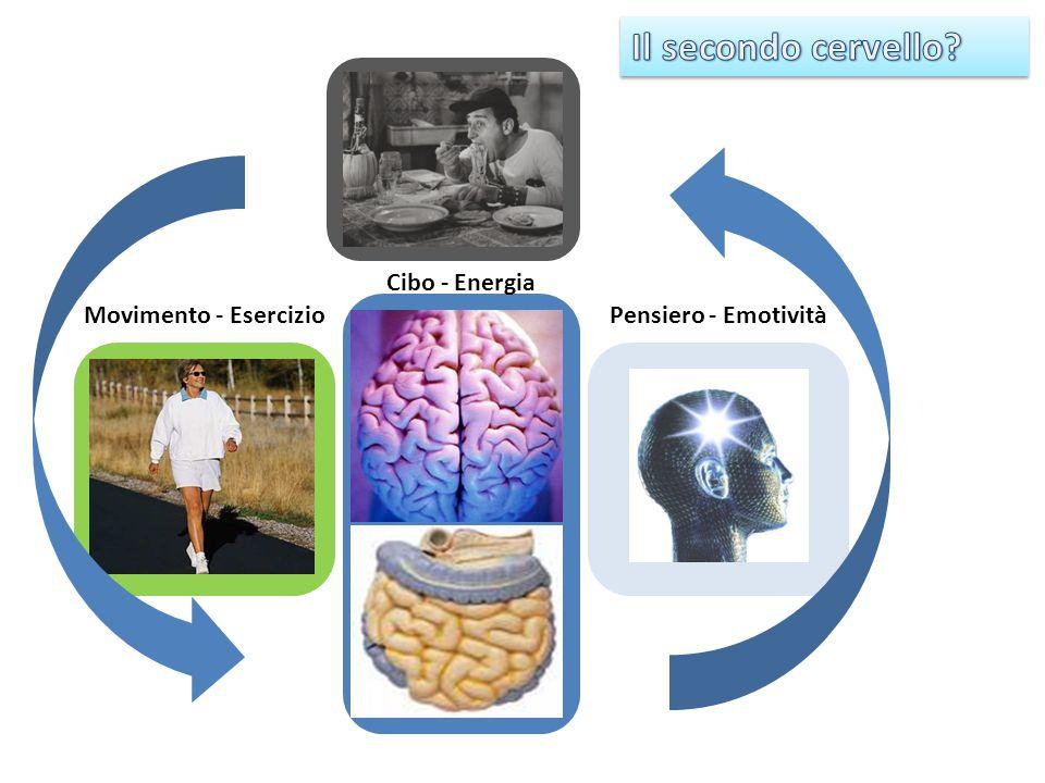 Rimedi naturali ai bruciori di stomaco (pirosi gastrica) Alcune cause (escluse patologie in corso): cibi speziati; assunzione di farmaci particolari (es.