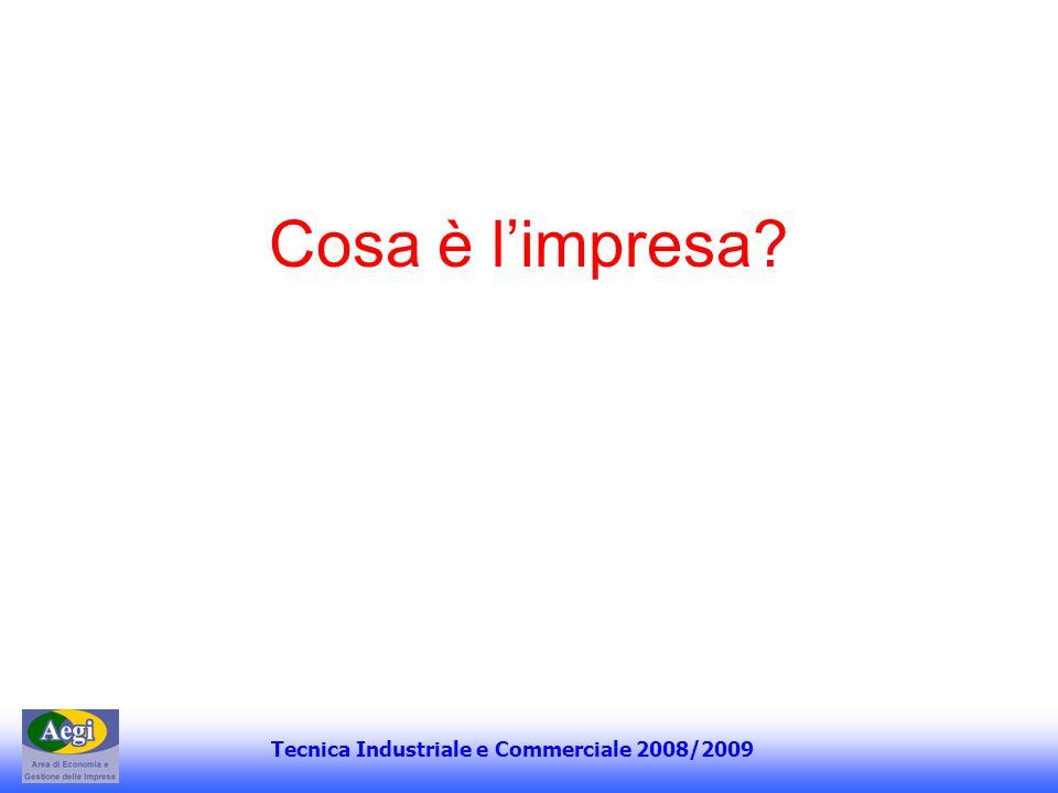 Tecnica Industriale e Commerciale 2008/2009 La teoria del successo sociale Le gratificazioni morali si associano a quelle economiche e ciò comporta unattenzione agli equilibri economici ed etici.