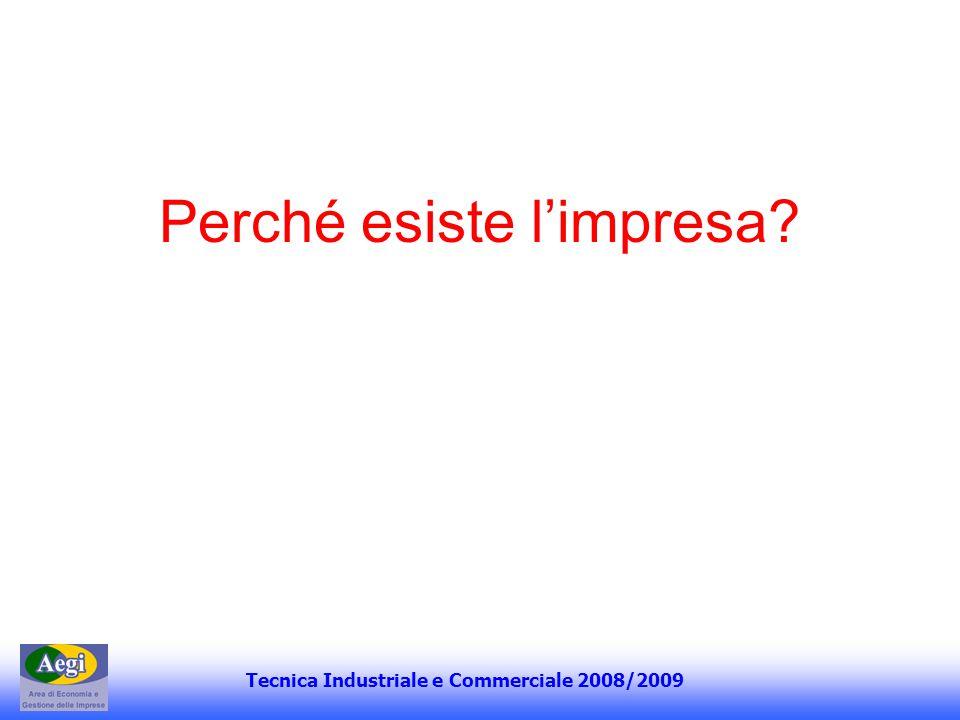 Tecnica Industriale e Commerciale 2008/2009 Perché esiste limpresa?