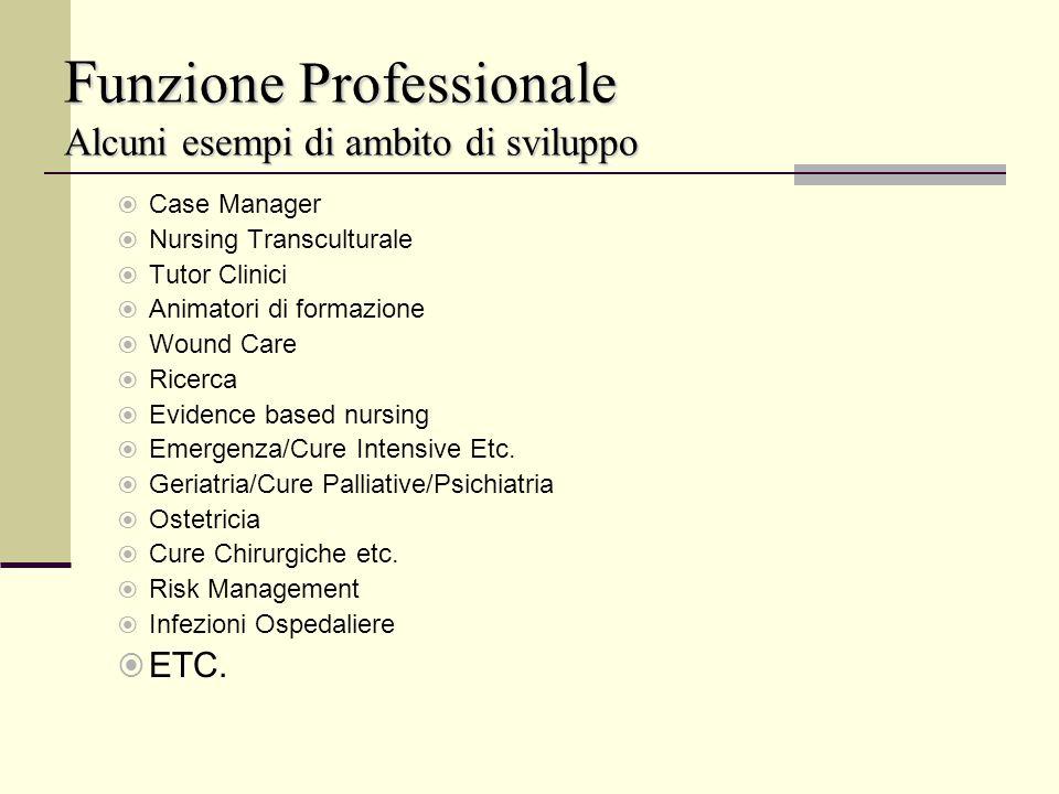 F unzione Professionale Alcuni esempi di ambito di sviluppo Case Manager Nursing Transculturale Tutor Clinici Animatori di formazione Wound Care Ricer