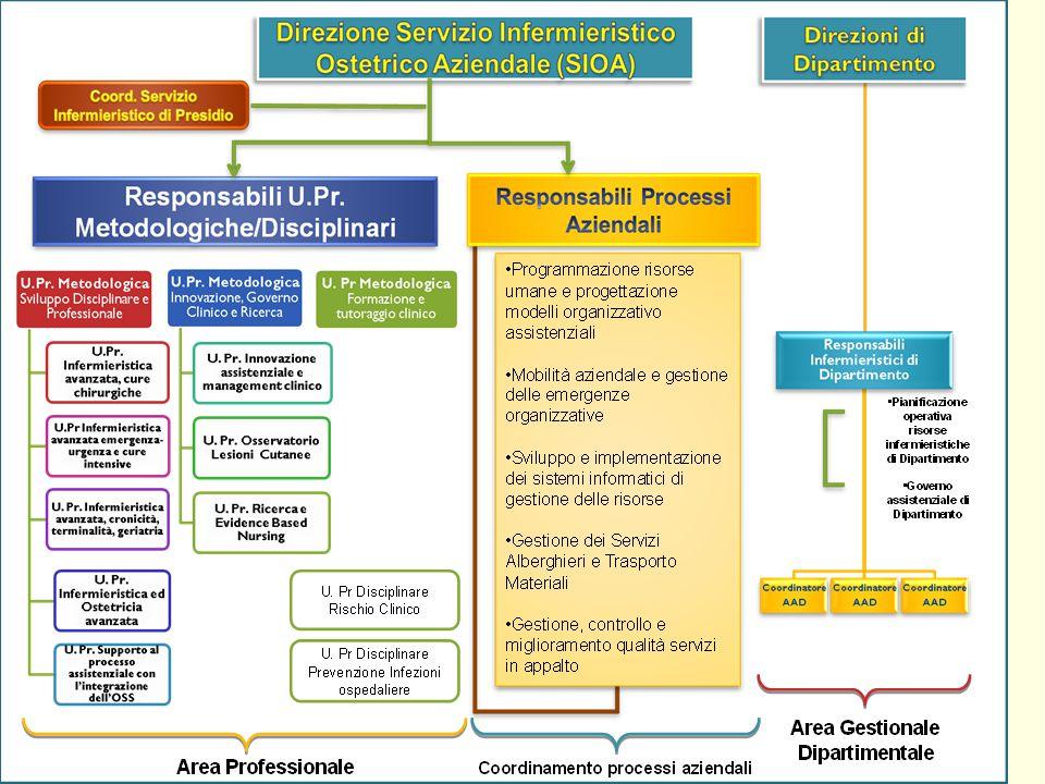 LEquipe multiprofessionale Linfermiere e il percorso specialistico(AOUC Firenze)