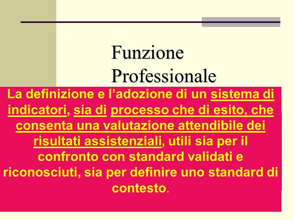 Funzione Professionale La definizione e ladozione di un sistema di indicatori, sia di processo che di esito, che consenta una valutazione attendibile