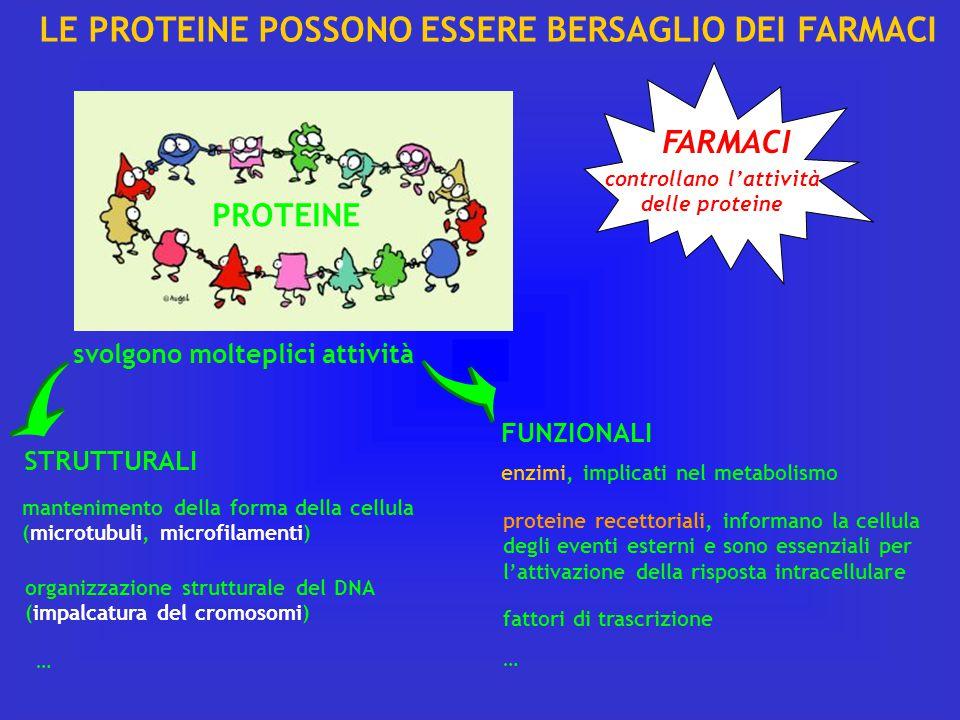 LE PROTEINE POSSONO ESSERE BERSAGLIO DEI FARMACI PROTEINE svolgono molteplici attività STRUTTURALI FUNZIONALI mantenimento della forma della cellula (